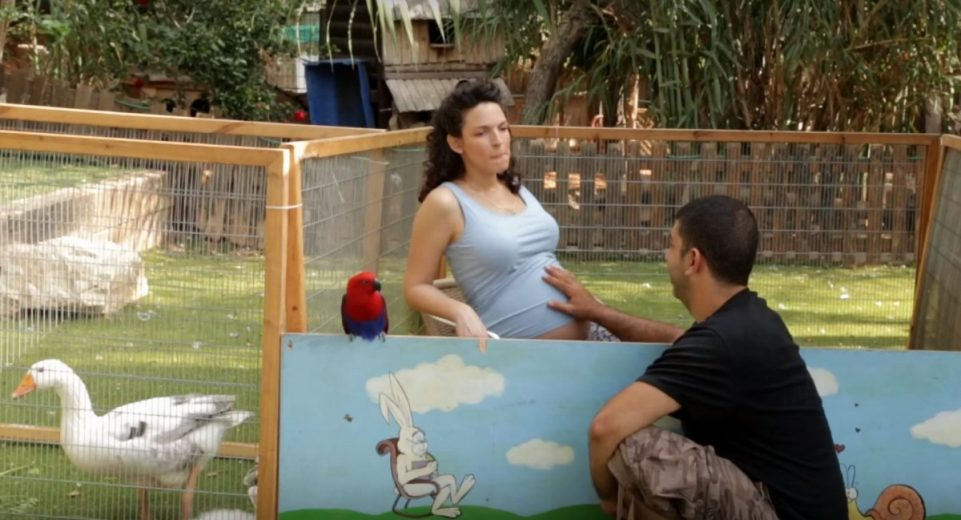 הערות של אנשים להריון ראשון... מצחיק ועוקצני