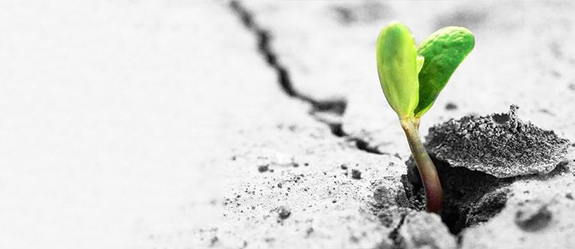 להתמודד עם משבר ולצאת ממנו מחוזק